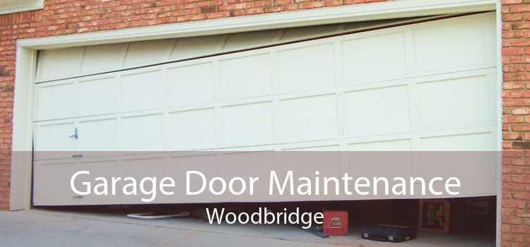 Garage Door Maintenance Woodbridge
