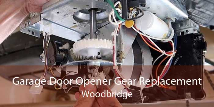 Garage Door Opener Gear Replacement Woodbridge