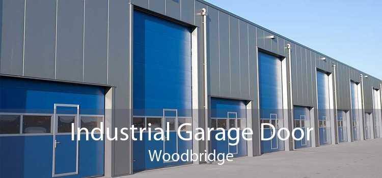 Industrial Garage Door Woodbridge